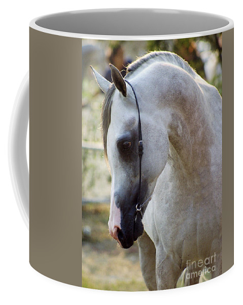Horse Coffee Mug featuring the photograph The Polish Arabian Horse by Angel Ciesniarska