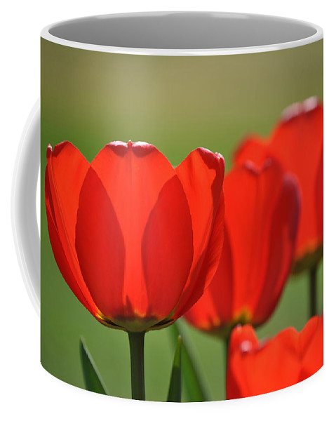 Easter Greeting Card Coffee Mug featuring the photograph The Red Tulips by Eric Liller