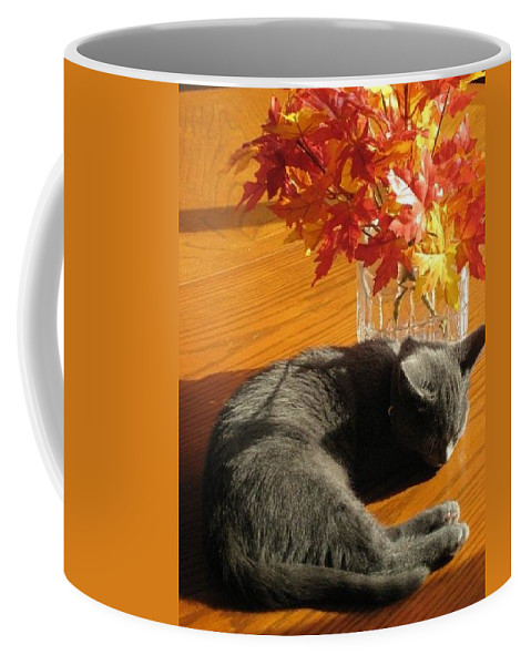 Orange Coffee Mug featuring the photograph The Restful Leaves If Fall by Jennifer E Doll