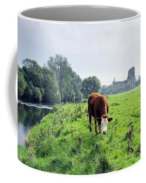 River Coffee Mug featuring the photograph The River Suir County Tipperary Ireland In Front Of Ruins Of Mediaeval Athassel Augustinian Priory by David Lyons