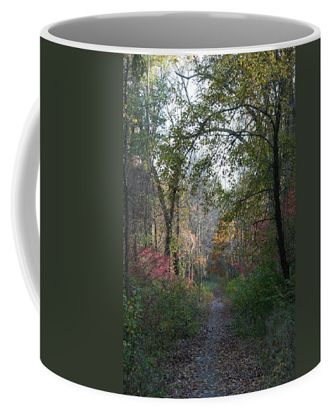 Autumn Coffee Mug featuring the photograph The Road Ahead No.2 by Neal Eslinger