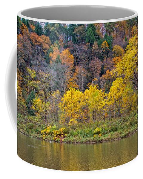 Tree Coffee Mug featuring the photograph The Season Of Yellow Leaves by John M Bailey