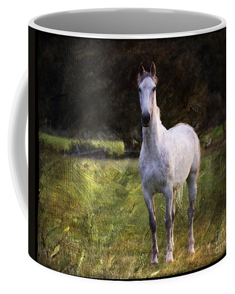 New Forest. White Stallion Coffee Mug featuring the photograph The Sentinel by Angel Ciesniarska