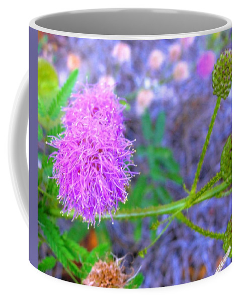 Sensitive Coffee Mug featuring the photograph The Shy Plant by Charlie and Norma Brock