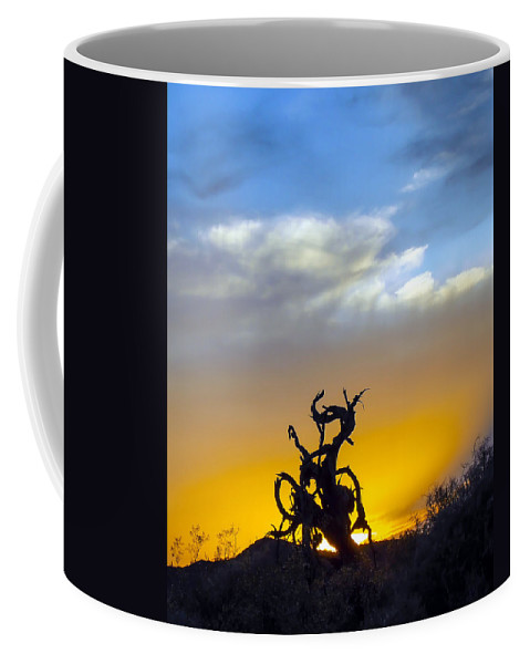 Landscape Coffee Mug featuring the photograph The Silhouette by Ryan Seek
