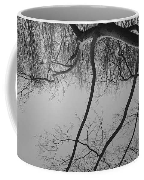 Branch Coffee Mug featuring the photograph The Sky Is Falling by Luke Moore
