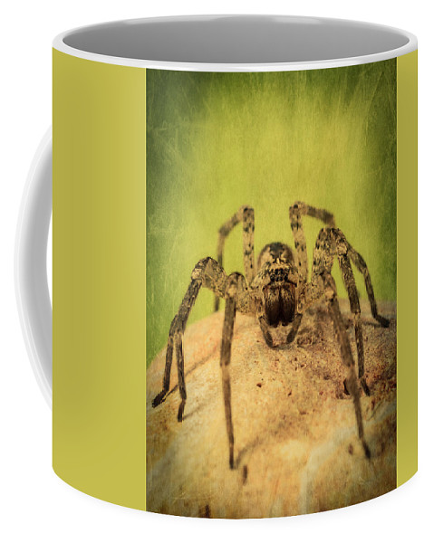 Spider Coffee Mug featuring the photograph The Spider Series X by Marco Oliveira
