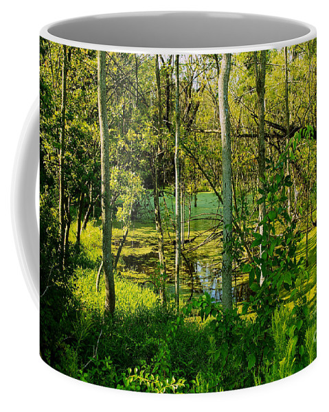 Wetlands Coffee Mug featuring the photograph The Swamp by William Norton