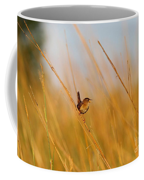 House Wren Coffee Mug featuring the photograph The Sweetest Song by Elizabeth Winter