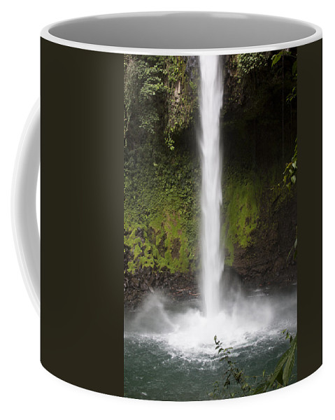 Texture Coffee Mug featuring the photograph The Texture Of Nature by Jean Macaluso