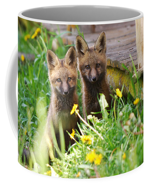 Animal#1 Coffee Mug featuring the photograph The Twins by Randy Giesbrecht