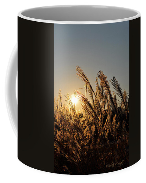 Popular Coffee Mug featuring the photograph The Wonder Of The Setting Sun by Paulette B Wright