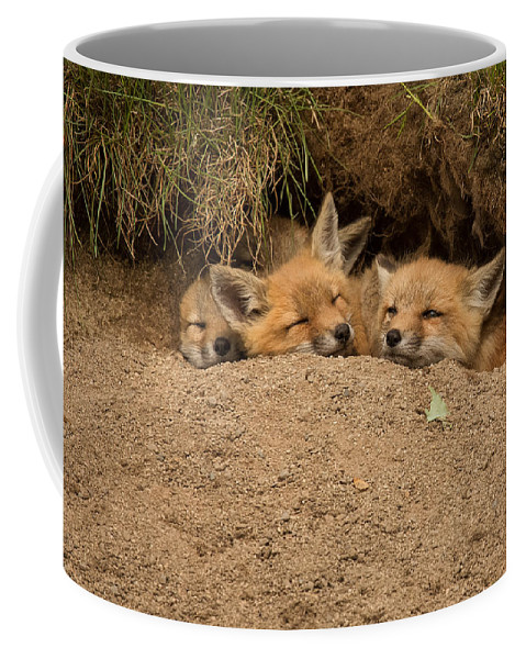 Baby Coffee Mug featuring the photograph There's Always Room For More by Everet Regal