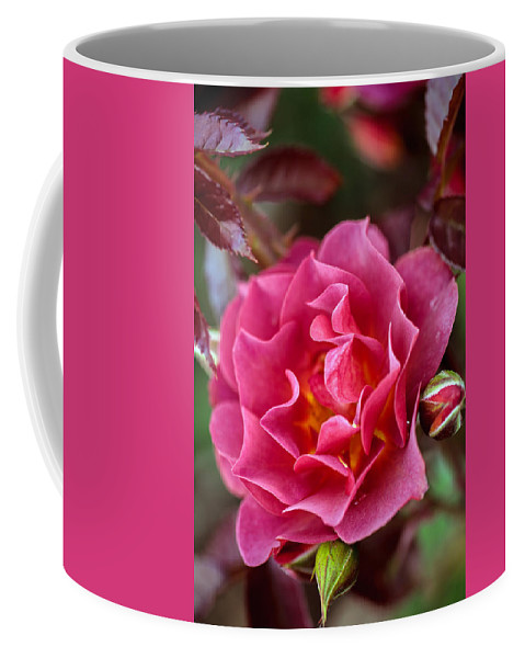 Bumble Bee Coffee Mug featuring the photograph Think Pink by Sennie Pierson