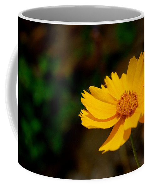 Flower Coffee Mug featuring the photograph Thinking Of You by Dany Lison