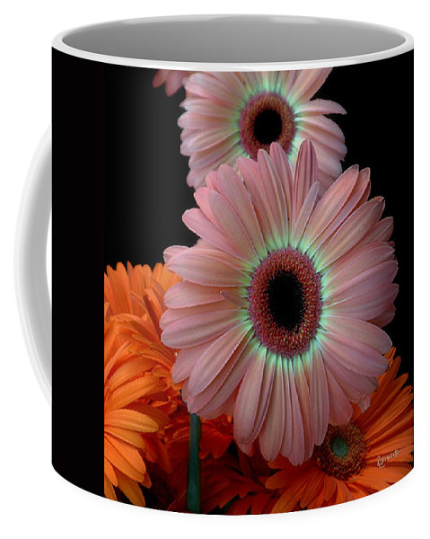 Gerberas Coffee Mug featuring the photograph Third Place by RC deWinter