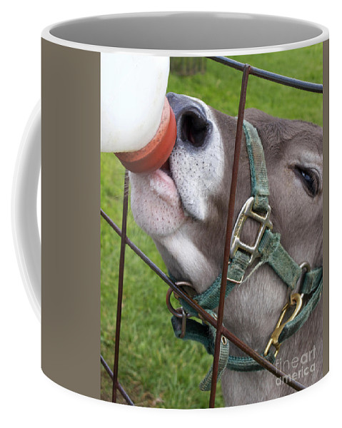 Calf Coffee Mug featuring the photograph Thirsty Baby by Ann Horn