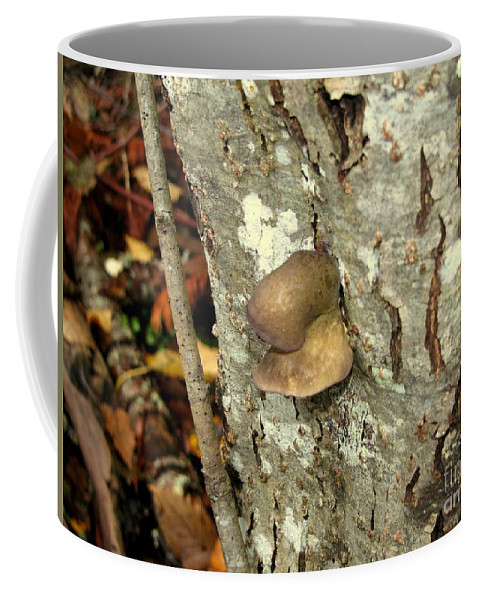 Tree Coffee Mug featuring the photograph This Tree Has A Nose by Leone Lund