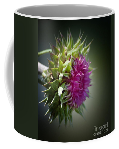 Thistle 14-3 Coffee Mug featuring the photograph Thistle 14-3 by Maria Urso