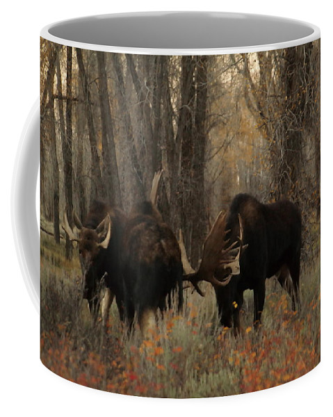 Moose Coffee Mug featuring the photograph Three Bull Moose Sparring by Jeff Swan