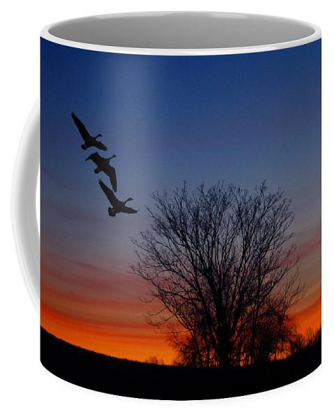 Three Geese At Sunset Coffee Mug featuring the photograph Three Geese At Sunset by Raymond Salani III