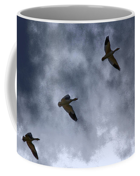 Geese Coffee Mug featuring the photograph Three Geese by Lynn Sprowl