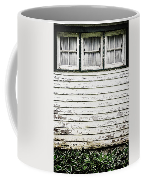 Window Coffee Mug featuring the photograph Three In A Row by Margie Hurwich