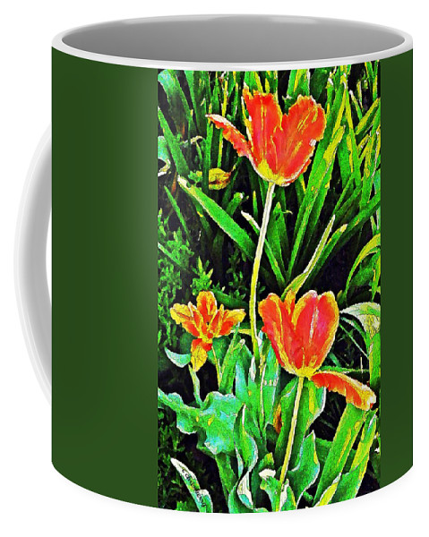Nature Coffee Mug featuring the photograph Three Orange Parrots by Chris Berry