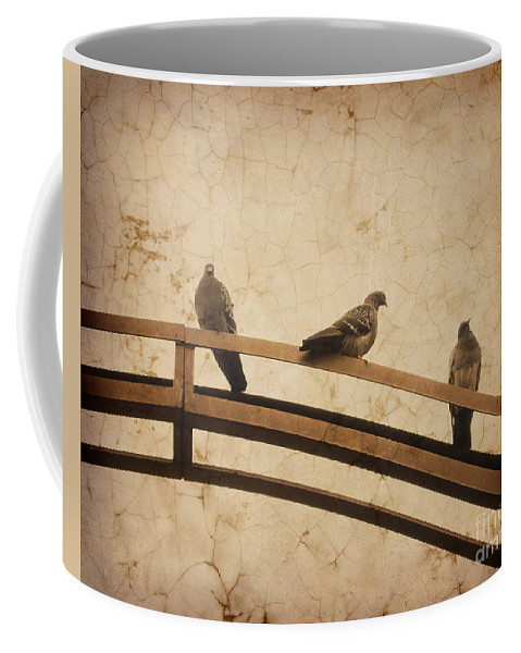 Birds Coffee Mug featuring the photograph Three Pigeons Perched On A Metallic Arch. by Bernard Jaubert