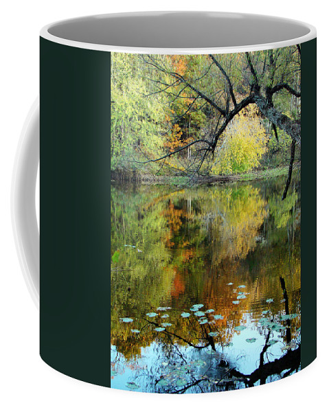 Lincoln Coffee Mug featuring the photograph Through The Tree's by Terry Anderson