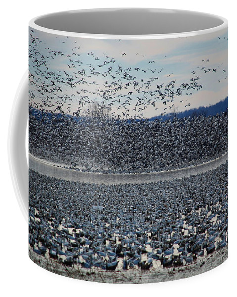Migration Coffee Mug featuring the photograph Tidal Wave Of Geese by Kim Blaylock