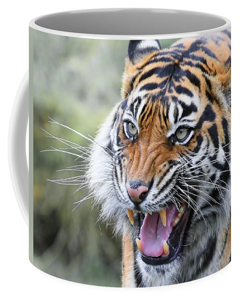 Tiger Coffee Mug featuring the photograph Tiger Growl by Athena Mckinzie