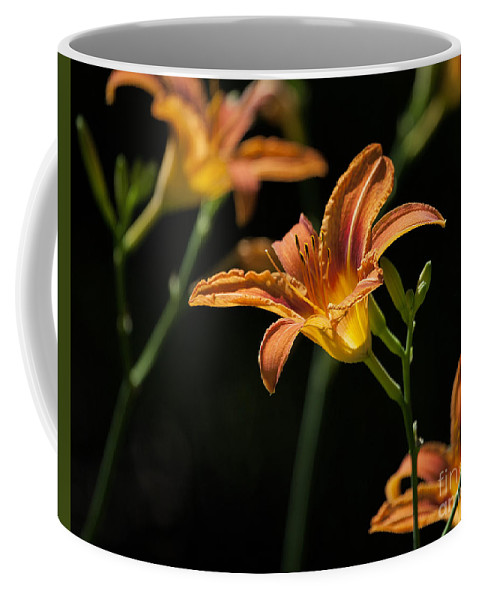 Lilies Coffee Mug featuring the photograph Tiger Lilies by Emma England