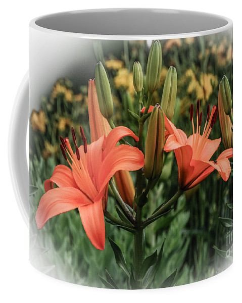 Tiger Lillies Coffee Mug featuring the photograph Tiger Lillies by Grace Grogan