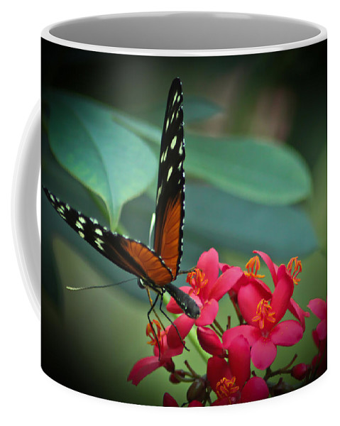 Tiger Longwing Butterfly Photographs Coffee Mug featuring the photograph Tiger Longwing Butterfly by Joann Copeland-Paul
