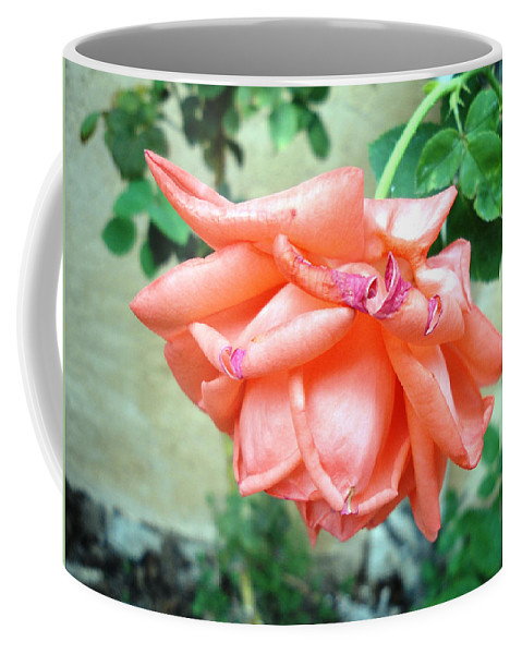 Rose Coffee Mug featuring the photograph Time's Up by Lovina Wright