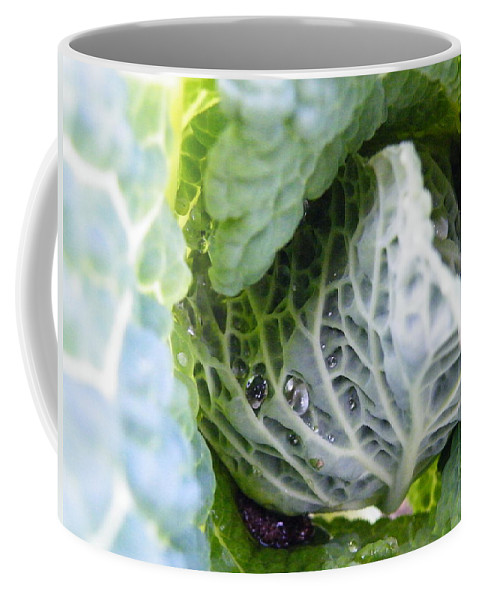 Tinted Coffee Mug featuring the photograph Tinted Tracery by Brian Boyle