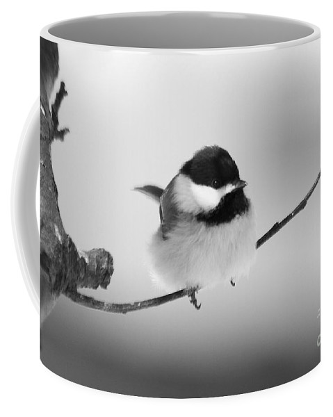 Bird Coffee Mug featuring the photograph Tiny Branch With Guest by Deborah Benoit