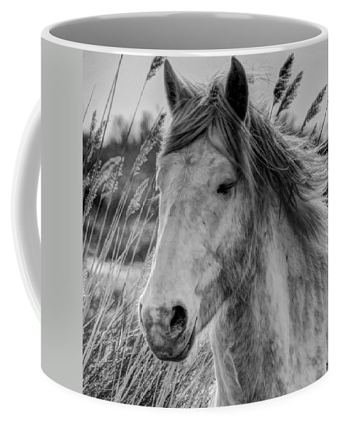 Horse Coffee Mug featuring the photograph Tired by Ingrid Smith-Johnsen