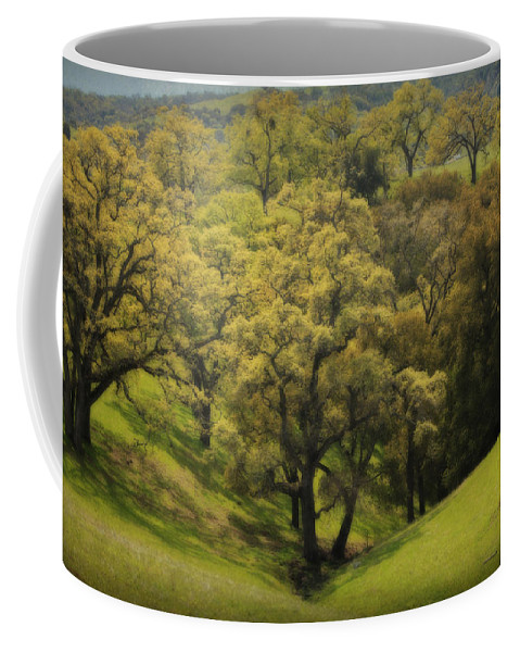 Sunol Regional Wilderness Coffee Mug featuring the photograph To Comfort You by Laurie Search