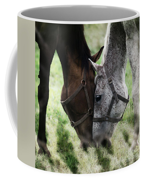 Horses Coffee Mug featuring the photograph Together by Angel Tarantella