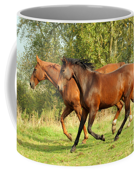 Horse Coffee Mug featuring the photograph Together Now by Angel Ciesniarska