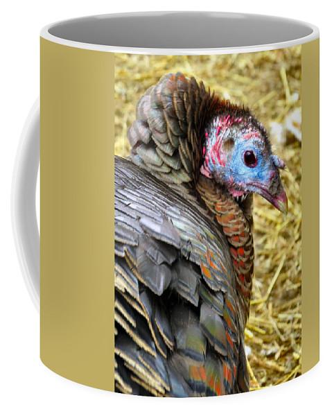 Turkey Coffee Mug featuring the photograph Tom Turkey by Art Dingo