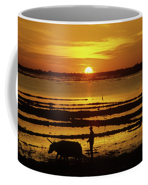 Cambodia Coffee Mug featuring the photograph Tonle Sap Sunrise 01 by Rick Piper Photography