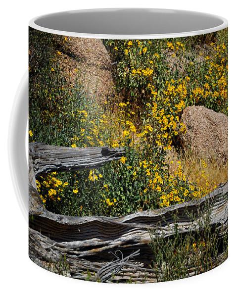 Arizona Coffee Mug featuring the photograph Tonto Deadwood 18187 by Jerry Sodorff