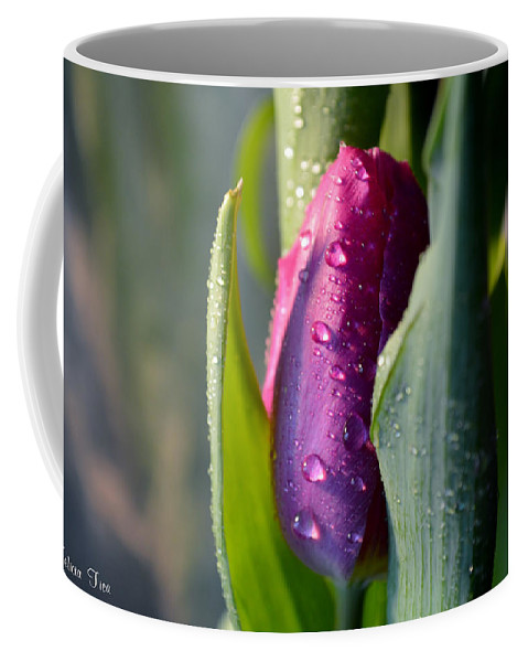 Tulip Coffee Mug featuring the photograph Touched From The Light by Felicia Tica