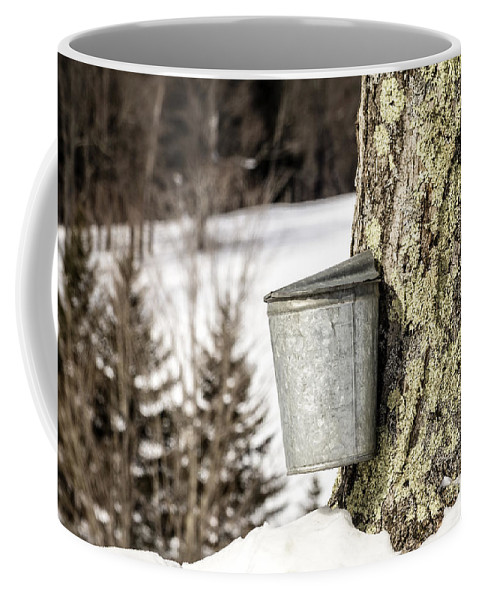 Vermont Coffee Mug featuring the photograph Traditional Sap Bucket On Maple Tree In Vermont by Edward Fielding