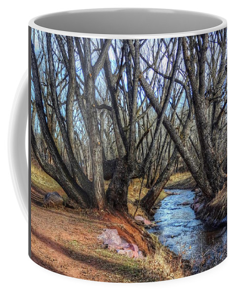 Winter Coffee Mug featuring the photograph Trail By Fountain Creek Winter by Lanita Williams