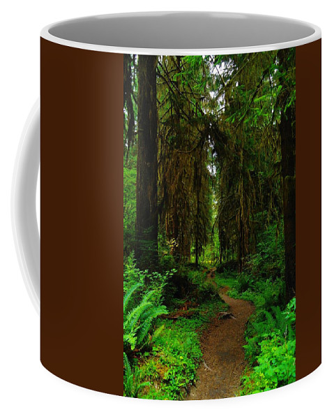 Green Coffee Mug featuring the photograph Trail Into The Forest by Jeff Swan
