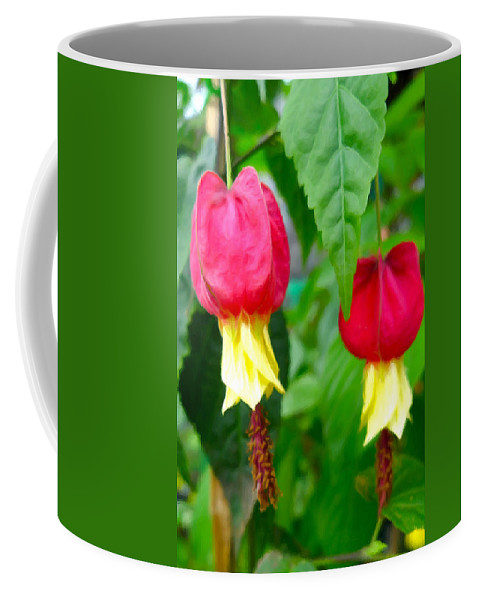 Trailing Abutilon Coffee Mug featuring the painting Trailing Abutilon Or Lantern Flower by Jeelan Clark
